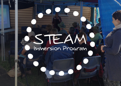 STEAM Immersion Program